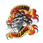 Pasukan Bola Sepak Daerah Hulu Terengganu (Hanelang FC)