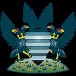 Salisbury City FC