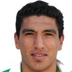 Luis Vicente  Jerez Silva
