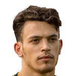 Pedro António  Pereira Gonçalves