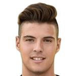 Alessandro  Minelli