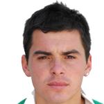 Fabián Arsenio  Castillo