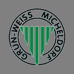 SV Grün Weiß Micheldorf
