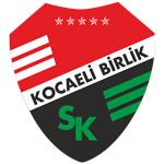 Kocaeli Birlik Spor Kulübü