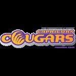 Capricorn Cougars FC