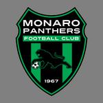 Monaro Panthers
