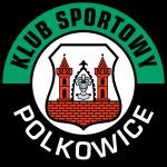 KS Polkowice