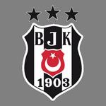 Beşiktaş Jimnastik Kulübü