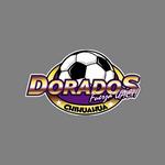 Dorados de la Universidad Autónoma de Chihuahua (Club Dorados Fuerza UACH)
