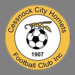 Cessnock City Hornets FC