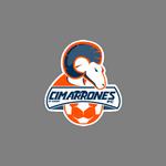 Cimarrones de Sonora FC II