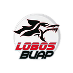 Lobos BUAP Under 17