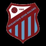 Başiskele Doğantepe Spor Kulübü