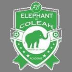 L'Eléphant de Coléah