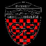 Kayseri Gençlerbirliği Futbol Kulübü