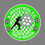 Industrial FC Avilés