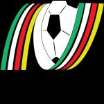 نادي نجران الرياضي