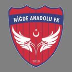 Niğde Anadolu FK