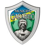 Pumas Generaleña