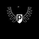Preussen Münster