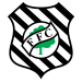 Guilherme Thiago Teixeira