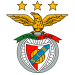 Luís Miguel Afonso Fernandes