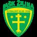 Enis Fazlagić