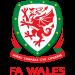 Pays de Galles U-21