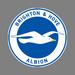 Brighton U18