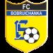 بوبرويتشانكا