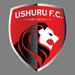 Ushuru