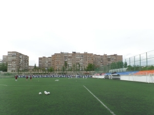 Banants Artificial Field