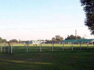 Stadion Grunwaldu
