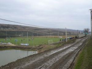 Stadionul Sătesc Teren artificial