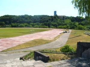 Vilniaus Pedagoginio Universiteto stadionas
