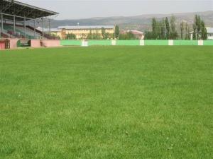 Bingöl Şehir Stadyumu