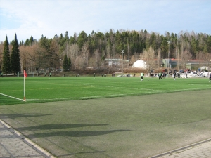 Kisapuiston tekonurmi, Lahti