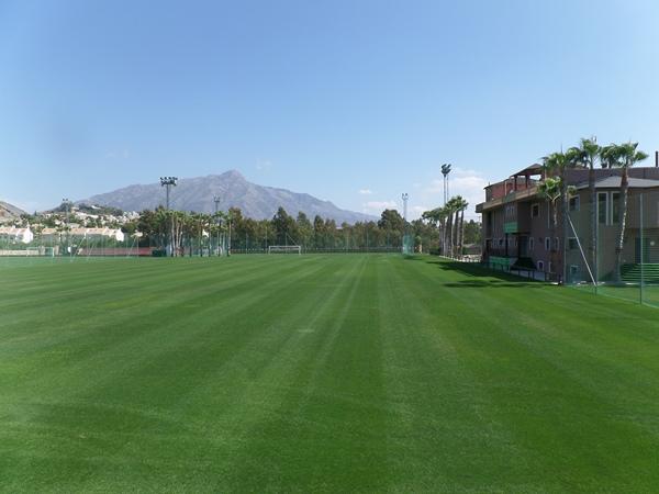 Marbella Football Center - Norte 1, San Pedro de Alcántara