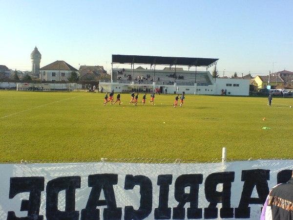 Stadionul Electrica, Timişoara