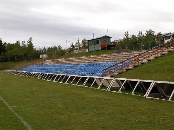 Würth völlurinn, Reykjavík