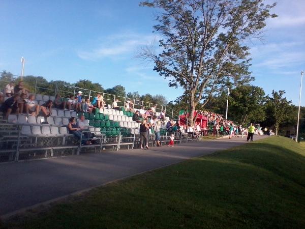 Maarjamäe Staadion, Tallinn