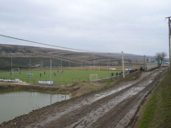 Stadionul Sătesc Teren artificial, Suruceni