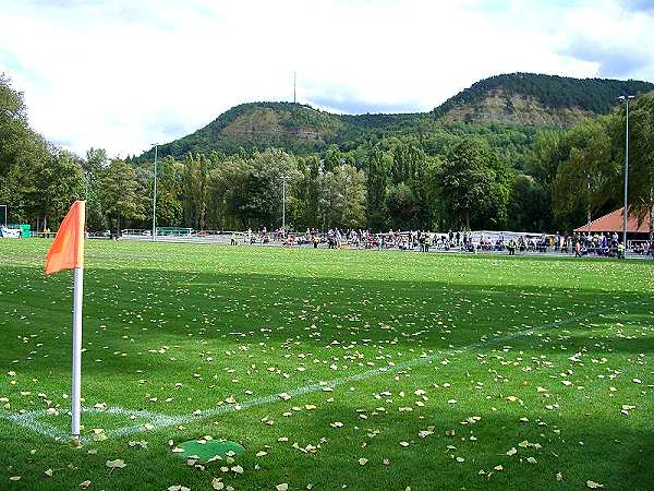 Ernst-Abbe-Sportfeld Platz 2, Jena